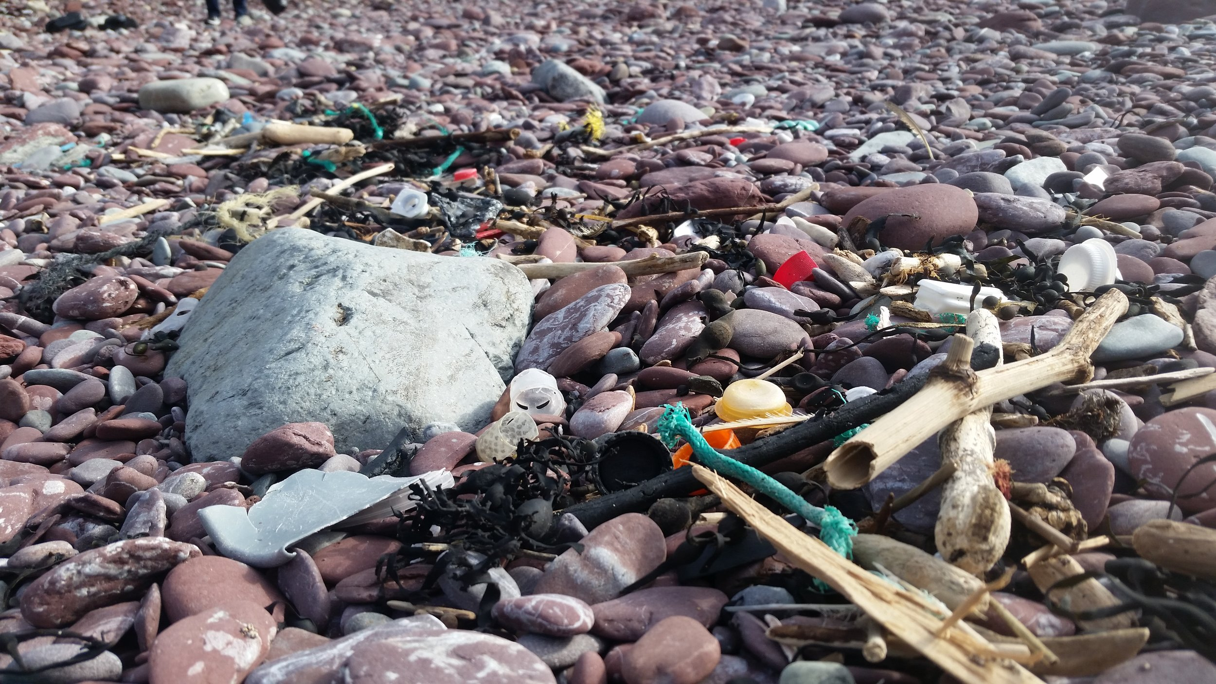Example of the litter on beaches the algorithm would detect, measure and monitor.