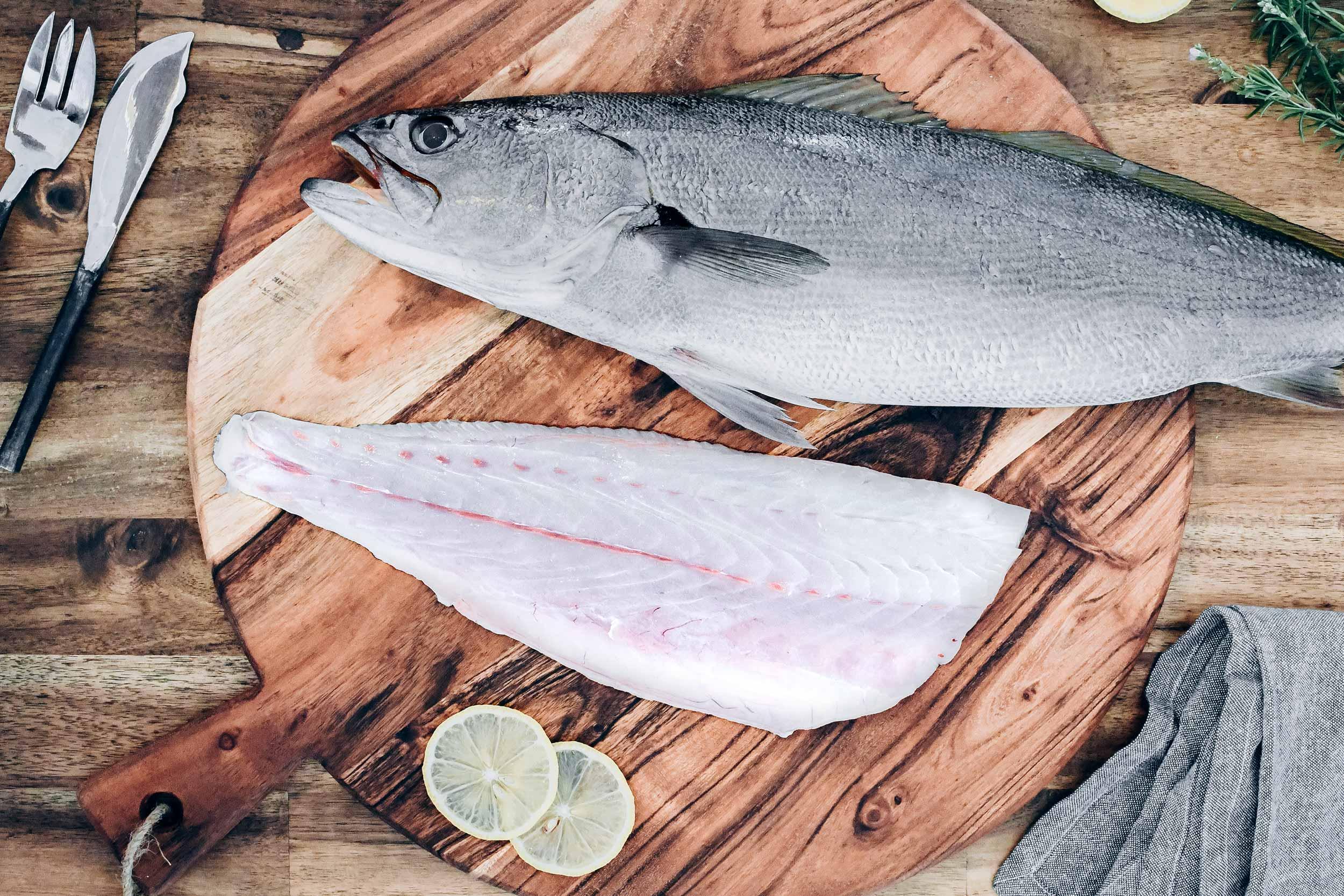 OurFish-tragline.jpg