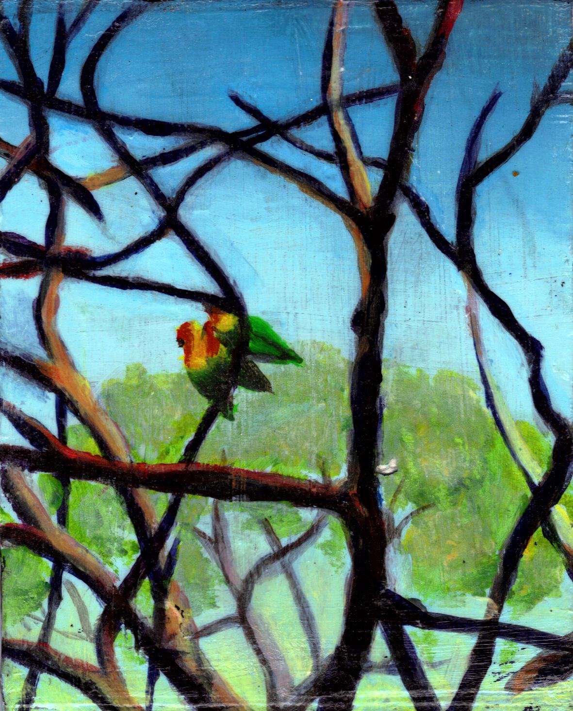 """Three Love Birds"""