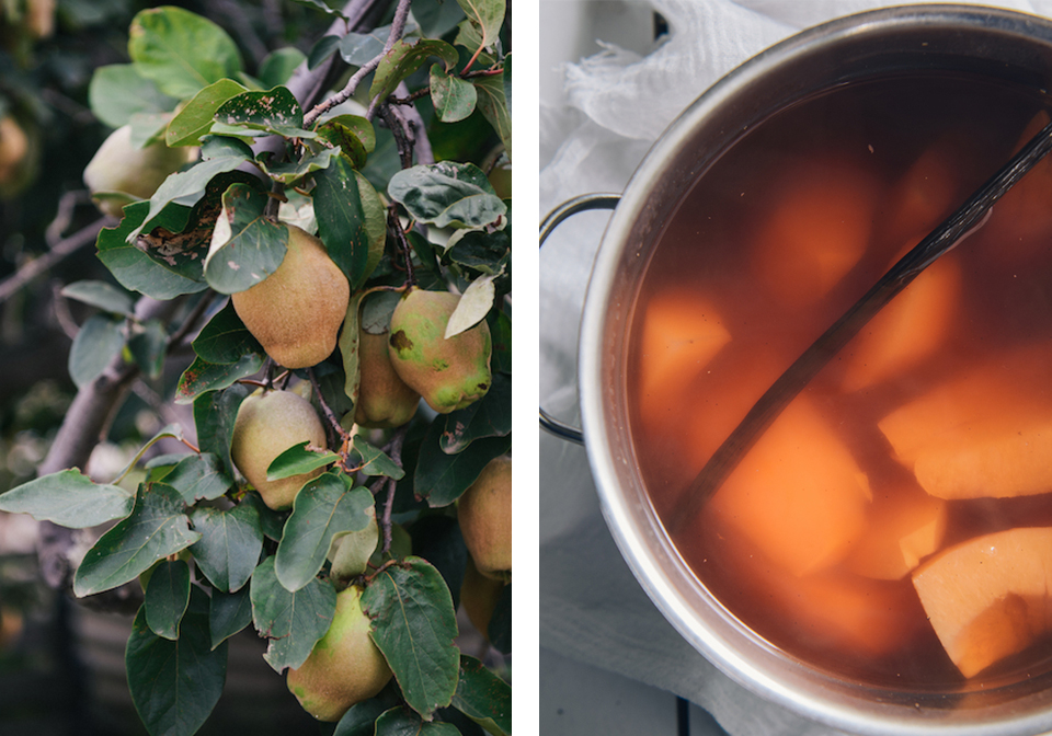 Poached Quince.jpg