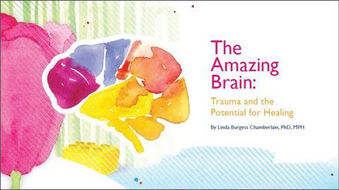 The Amazing Brain 2 Snip.JPG