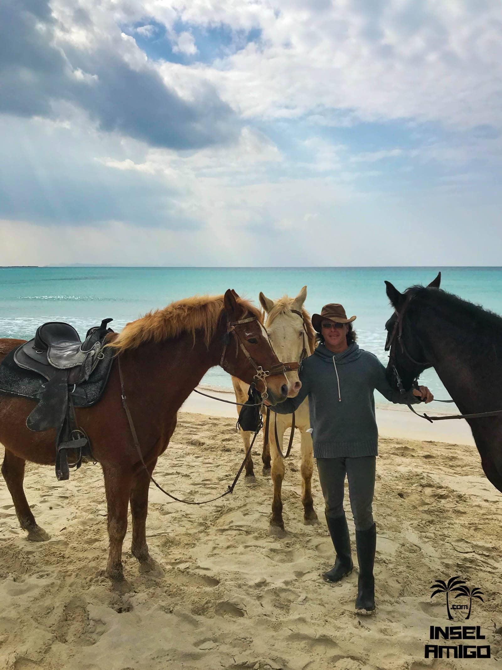 Pedro und seine Pferde