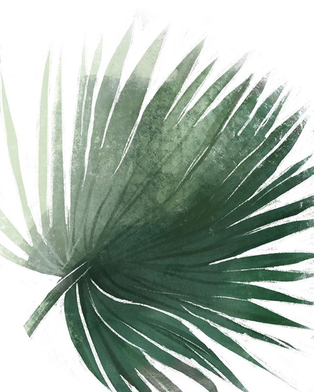 What do you do when your Dr is running an hour behind?  You doodle palm fronds and try out new negative painting techniques in @procreate !  #carveouttimeforart #digitalart #digitalpainting #digitalillustration #experiencetruecolors #colorcrushcreative #greenery #ihavethisthingwithcolor #instaplants #botanicalillustration #botanicalart #thesketchbookfiles #createeveryday #createarteveryday #supportwomenartists #supportlivingartists