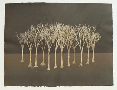"Grove II - fiber trees on handmade paper Dimensions: 24"" x 18"""