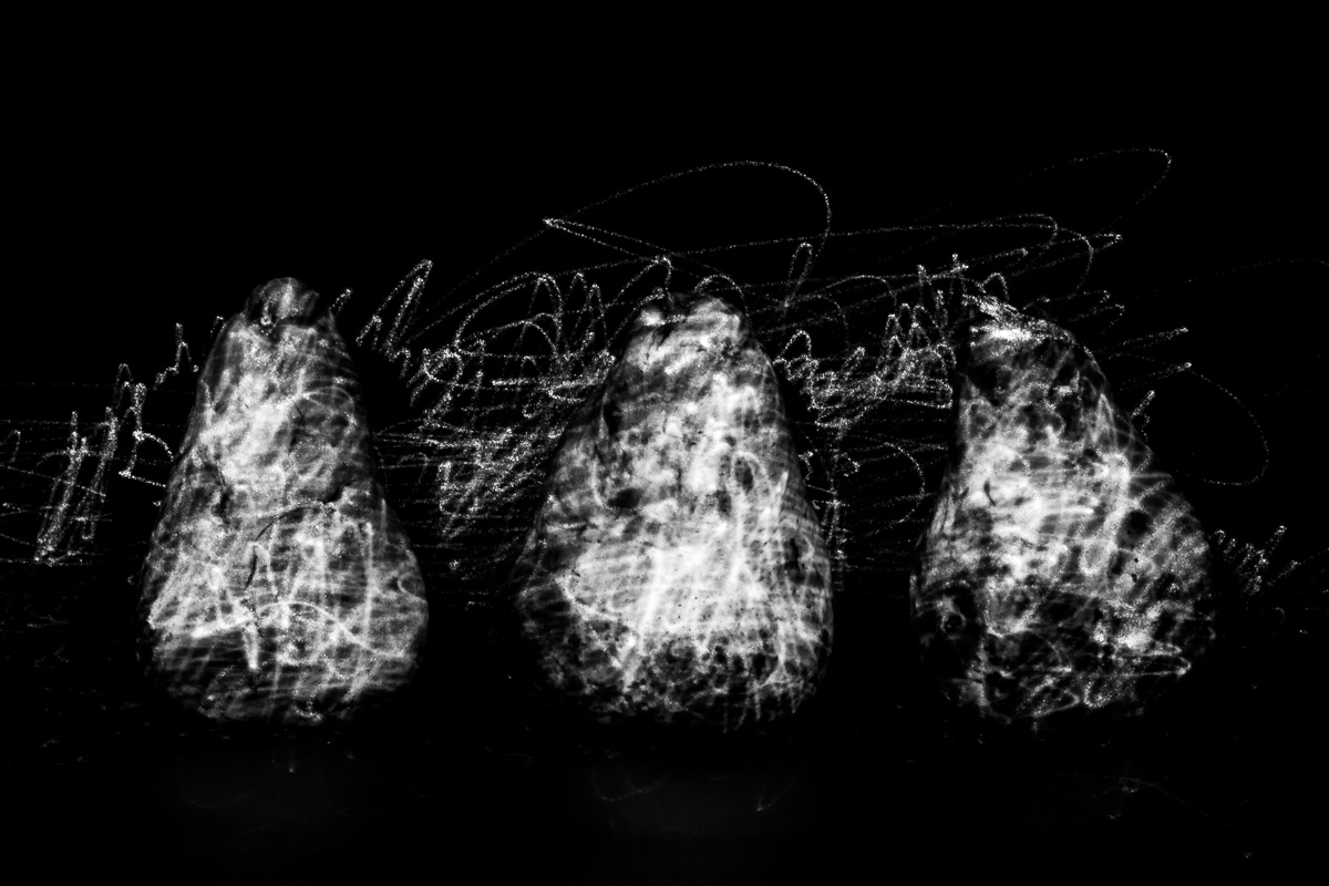 Illuminated flora, Hetero luminous series, Pyrus communis IV