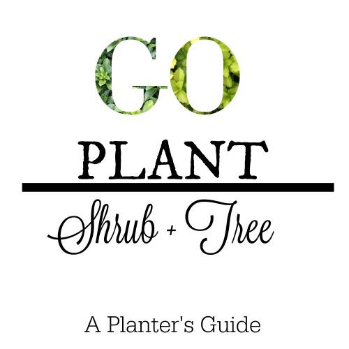 Go Plant Shrub + Tree Guide