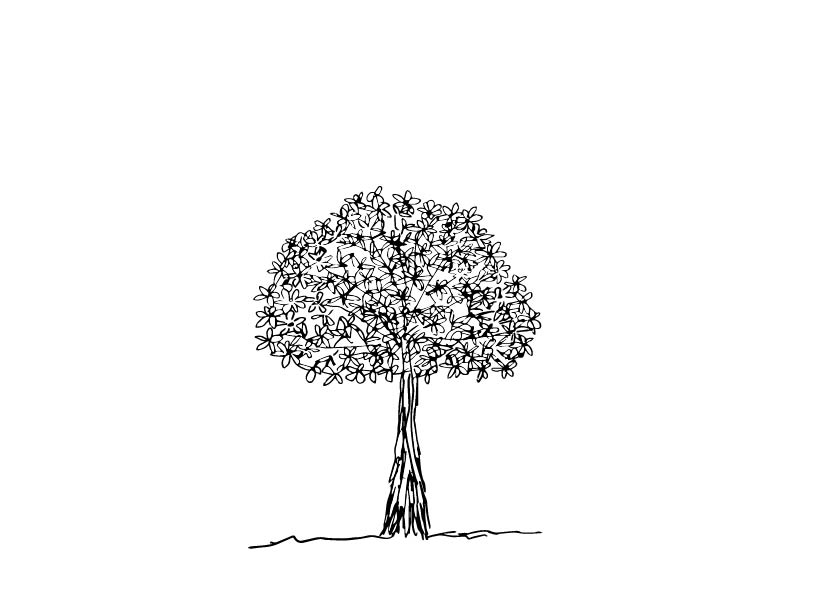 round ornamental tree 1-02.jpg