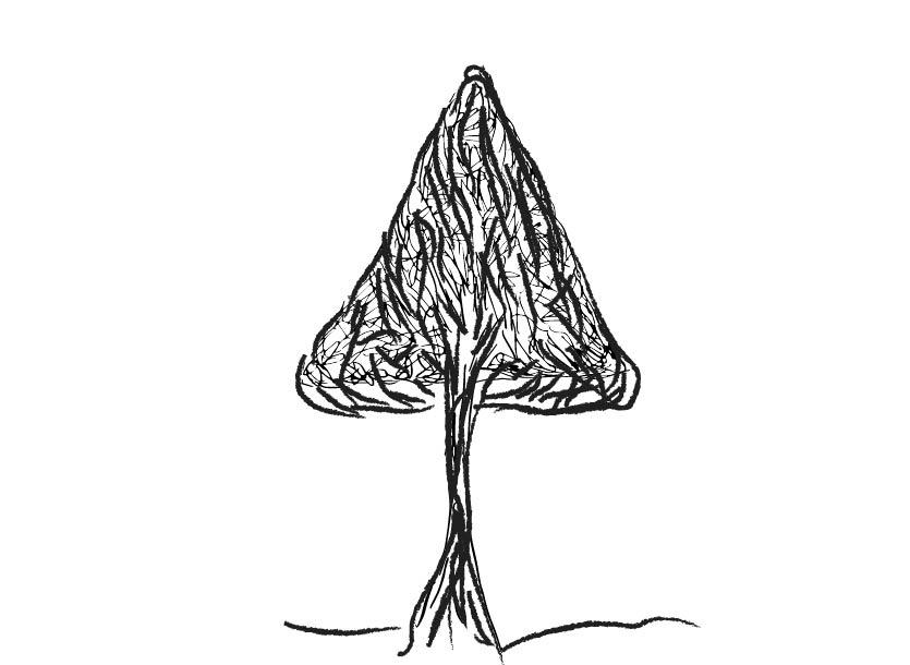 pyramidal ornamental tree1-02.jpg