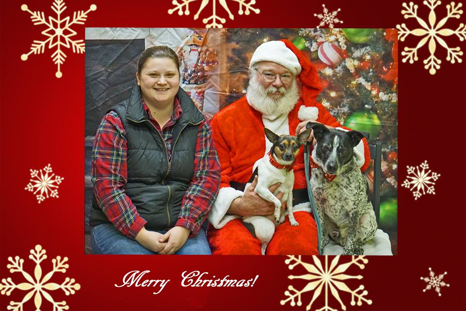 Santa and person and dogs.jpg