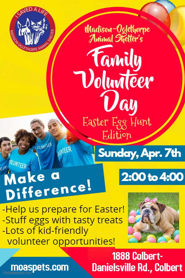 Family Volunteer Day - Easter Edition - Made with PosterMyWall.jpg
