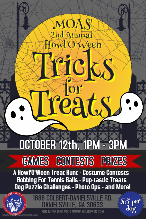2019 MOAS HowlOWeen Tricks for Treats Flyer - Made with PosterMyWall.jpg