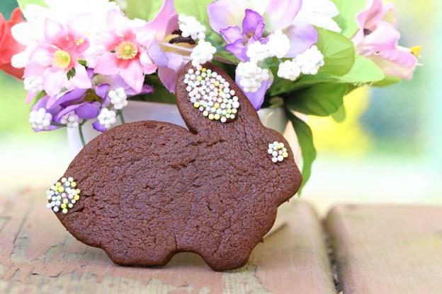 Allergy friendly chocolate sugar cookies