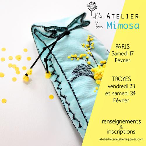 mimosa2.jpg