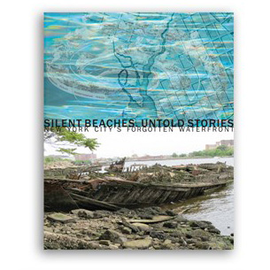 Silent Beaches, Untold Stories    Elizabeth Albert Damiani, 2016