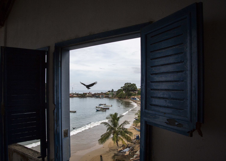 ANDREA HERNANDEZ Caracas, Venezuela + New York, NY, USA  www.andrernandez.com   @andrernandez  //  @andrernandez