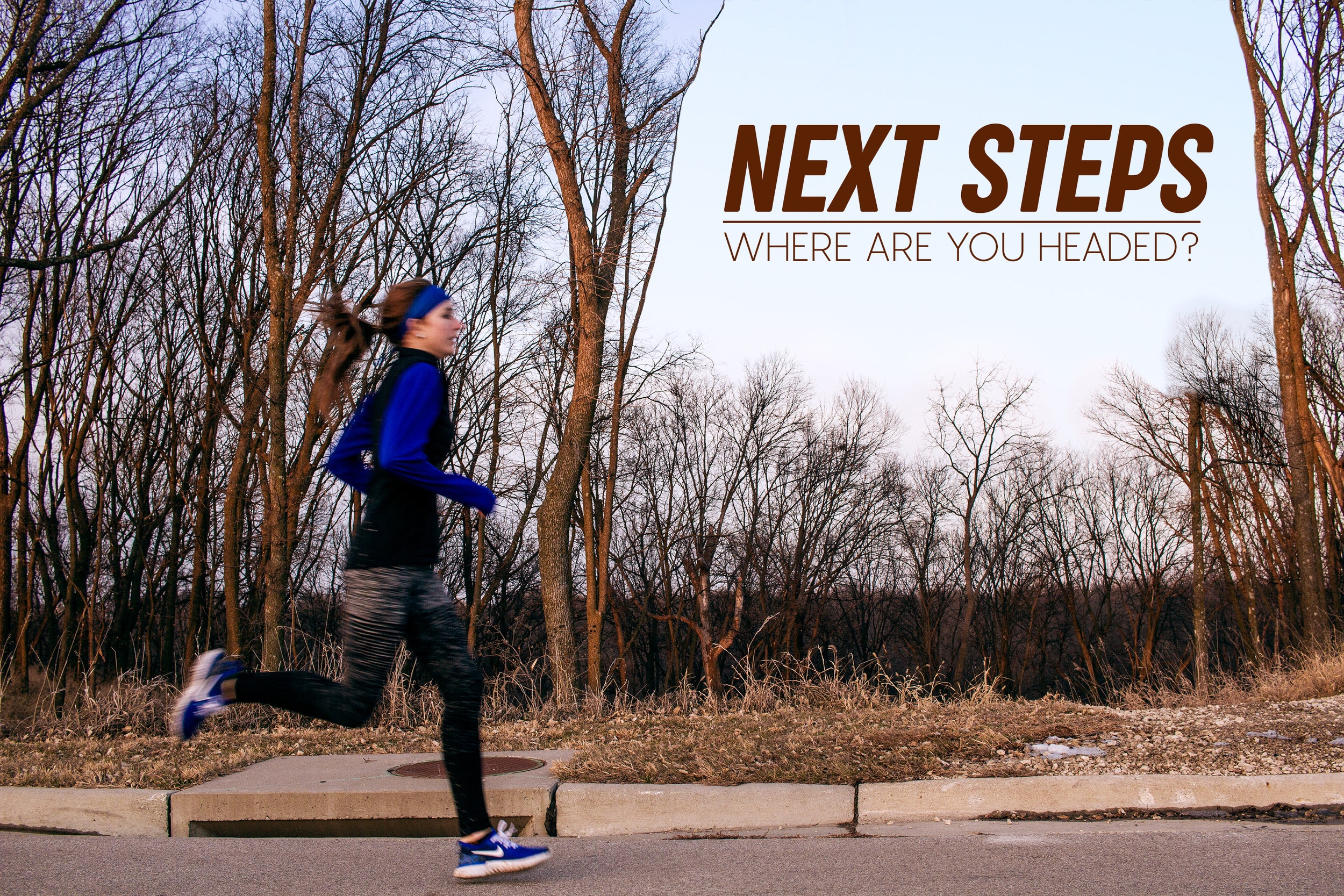 Next Steps Graphic - Bryce.jpg