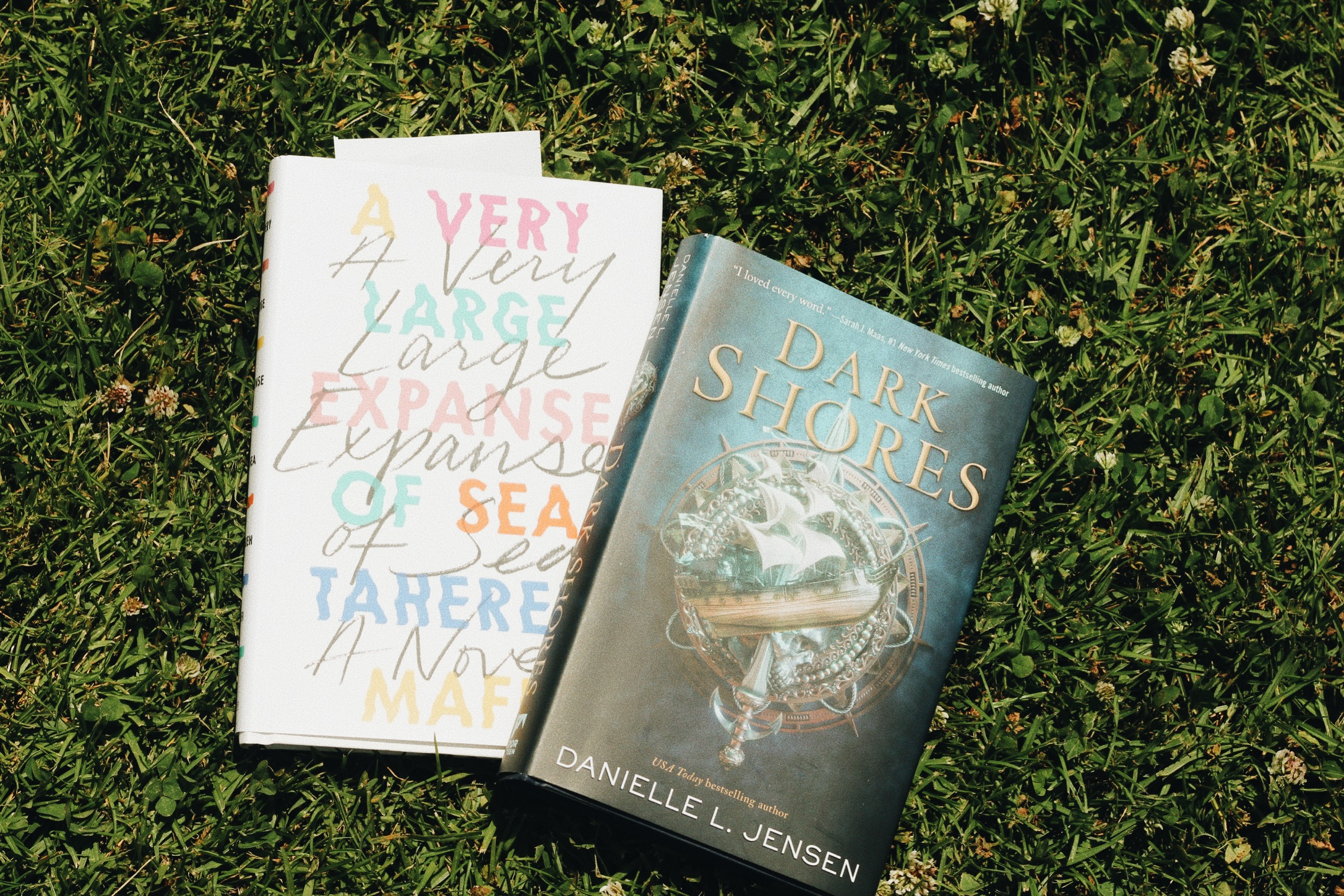 A Very Large Expanse of Sea  by Tahereh Mafi and  Dark Shores  by Danielle L. Jensen