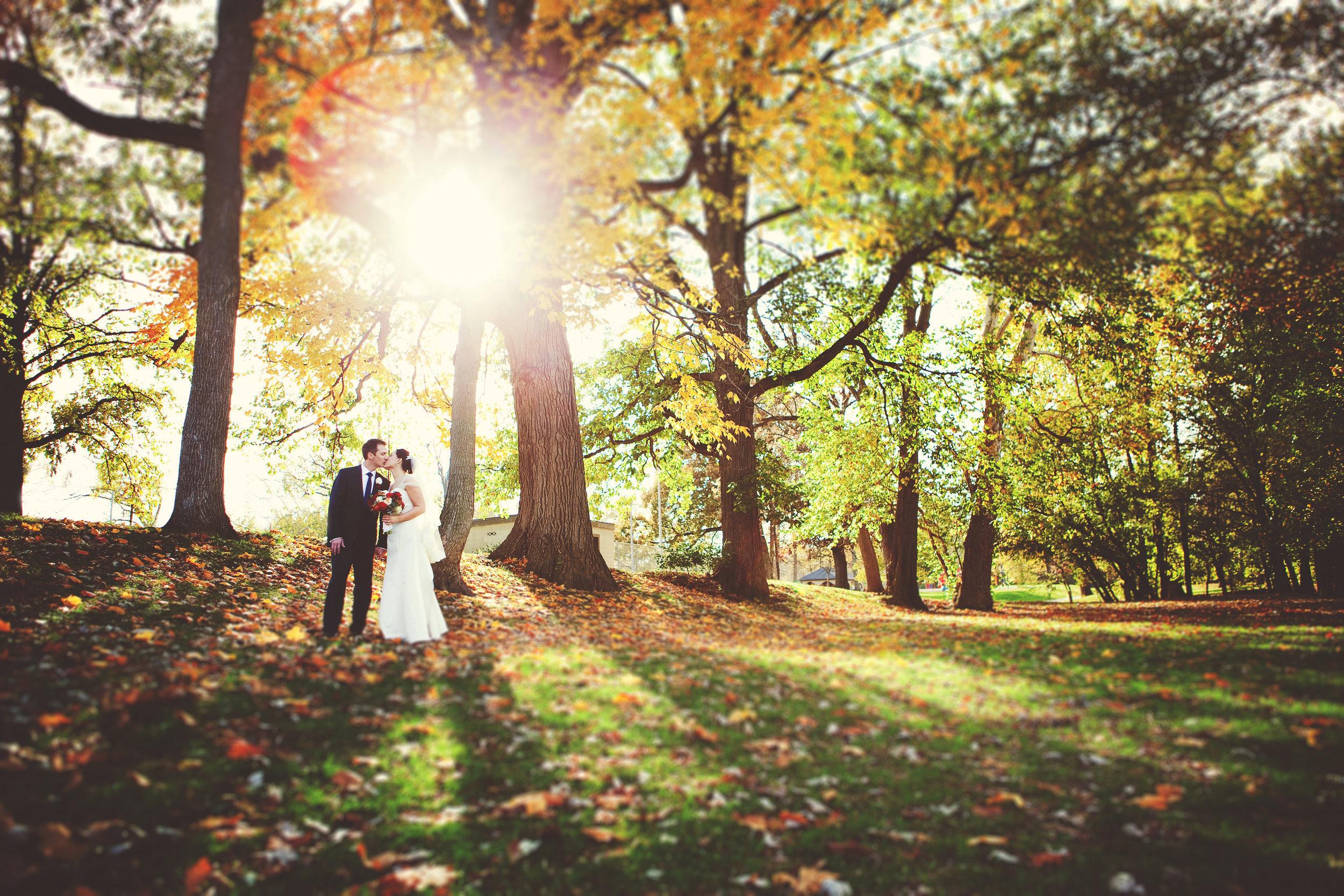 wedding 261.jpg