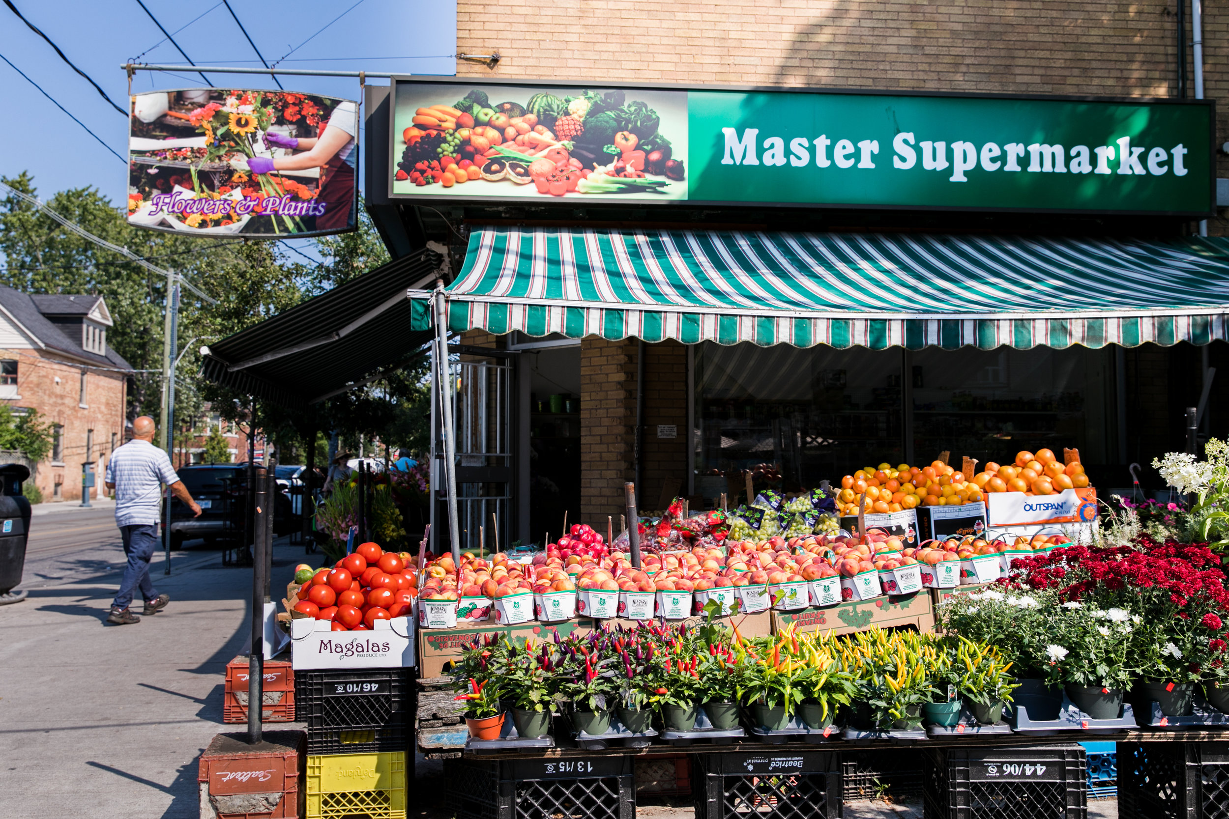 Roncesvalles Avenue Fruit Stand