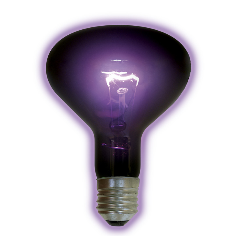100 Watt Blacklight Bulb - BL100