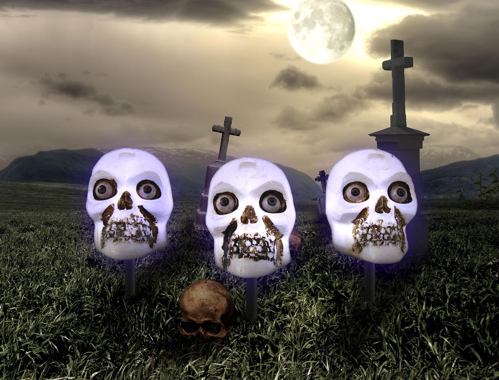 V8930-in-cemetery.jpg