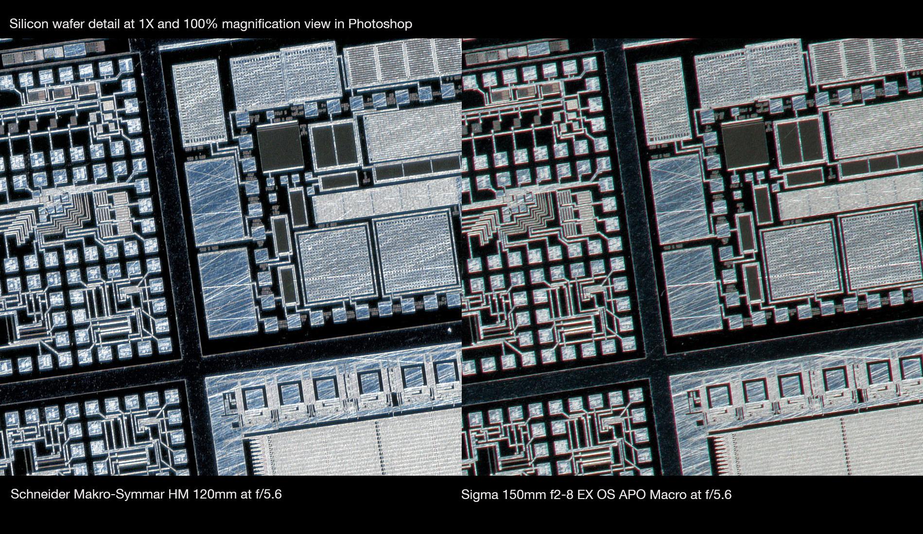Schneider-Macro-Symmar-HM-120mm-vs-Sigma-150-Macro-at-1X-corner-crop-Robert-OToole-Photography.JPG