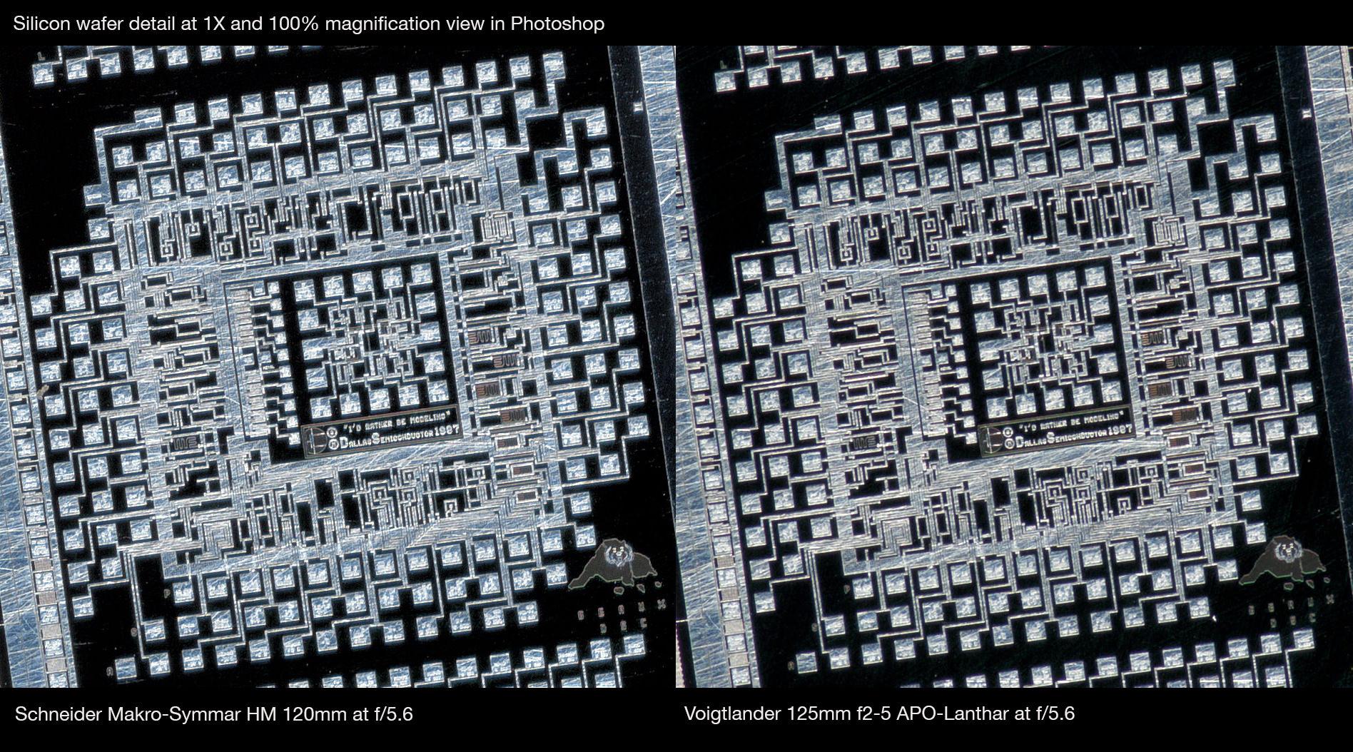 Schneider-Macro-Symmar-HM-120mm-vs-Voigtlander-125mm-APO-Lanthar-at-1X-center-crop-Robert-OToole-Photography.JPG