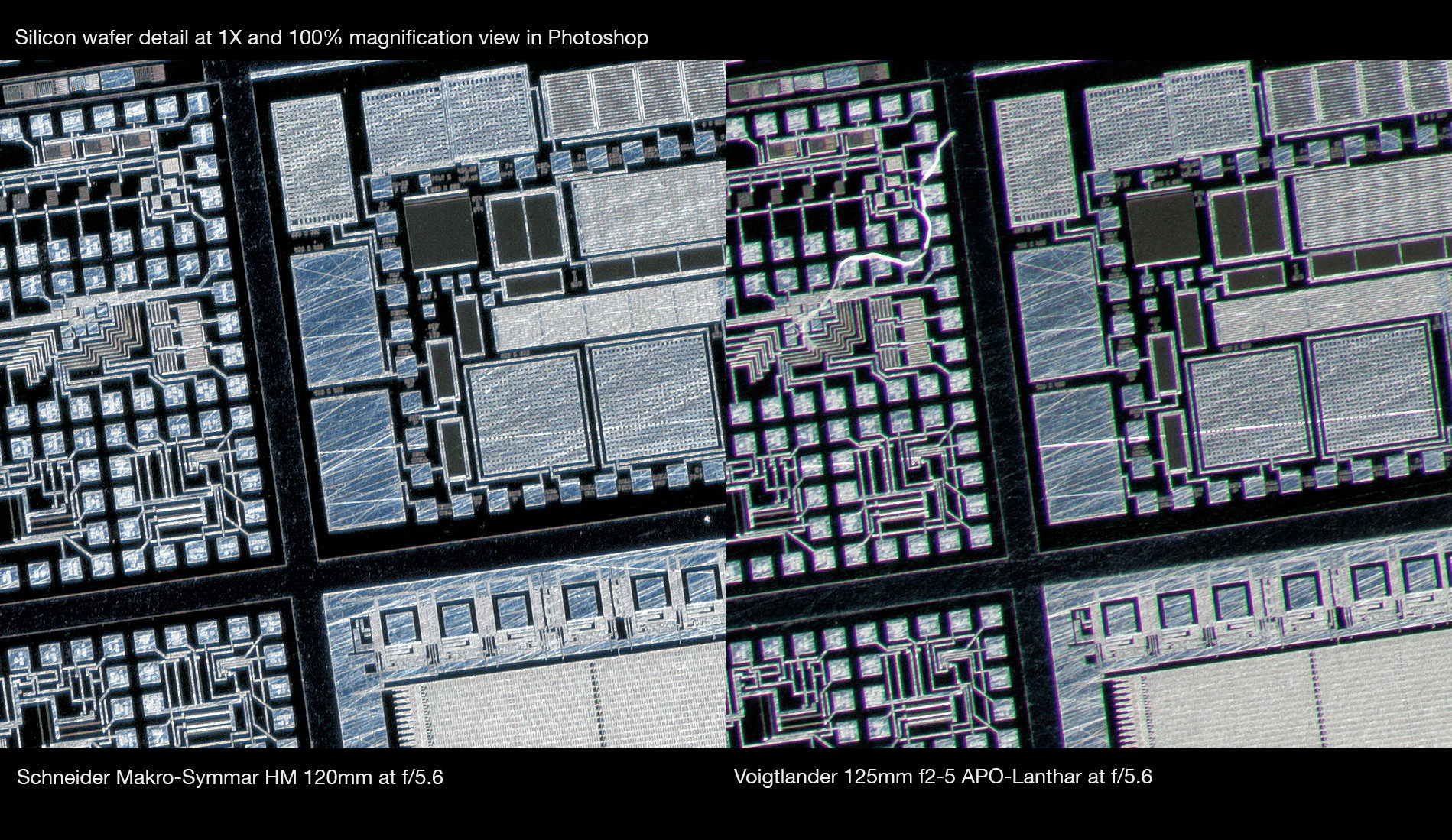 Schneider-Macro-Symmar-HM-120mm-vs-Voigtlander-125mm-APO-Lanthar-at-1X-corner-crop-Robert-OToole-Photography.JPG