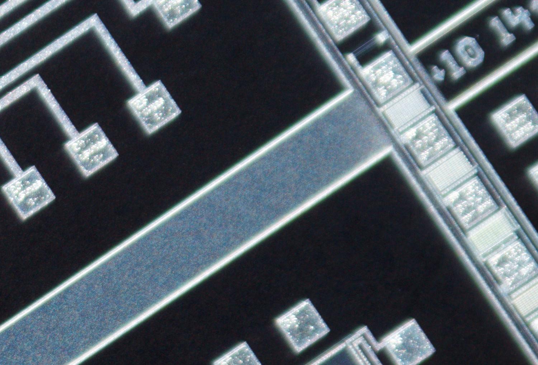 SK 28mm f/2 Xenon 100% corner crop at f/2.8