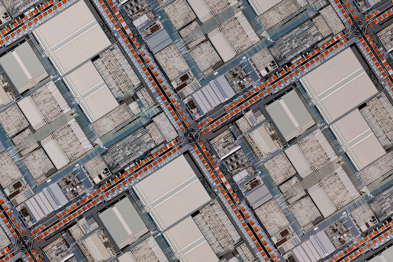 Uncropped Scanner Nikkor ED 7 image resized to 1500 pixels.