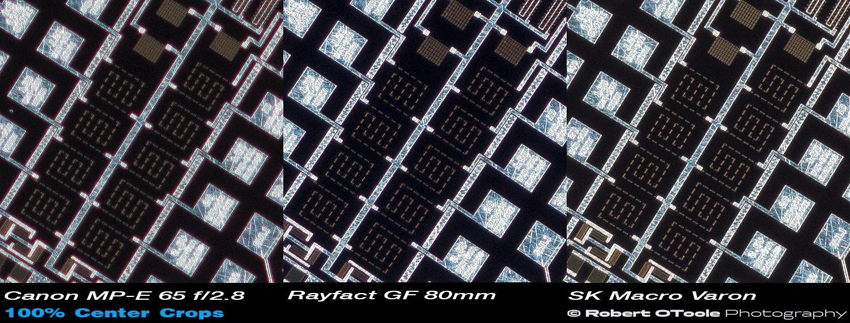 Canon-MPE-Rayfact-GF-Scheider-MV-2.1x-100-percent-crops.jpg