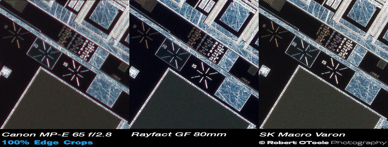 Canon-MPE-Rayfact-GF-Scheider-MV-2.1x-100-percent-edge-crops.jpg