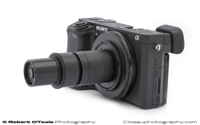 Tominon-26.9mm-lens-Closeuphotography-Robert-OToole-Photography.jpg