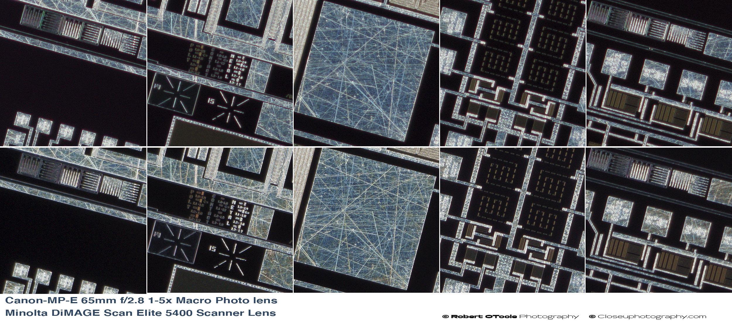 Canon-MP-E-65mm-f2.8-1-5x-Macro-Photo-lens-vs-Minolta-DiMAGE-Scan-Elite-5400-Scanner-Lens-100-percent-crops.jpg