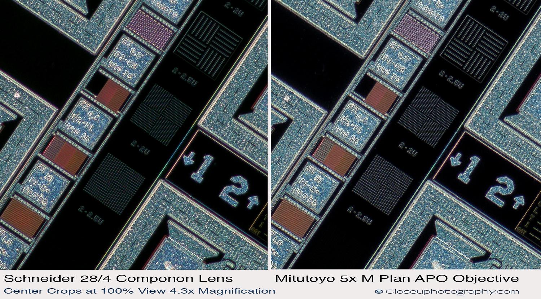 Center-crops-Schneider-Makro-symmar-120-and-SK-Componon-28-4-at-4.3x-vs-Mitutoyo-5x-Plan-APO-closeuphotography.com.jpg