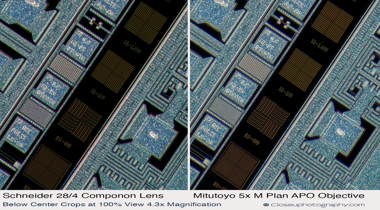 Below-Center-crops-Schneider-Makro-symmar-120-and-SK-Componon-28-4-at-4.3x-vs-Mitutoyo-5x-Plan-APO-closeuphotography.com.jpg
