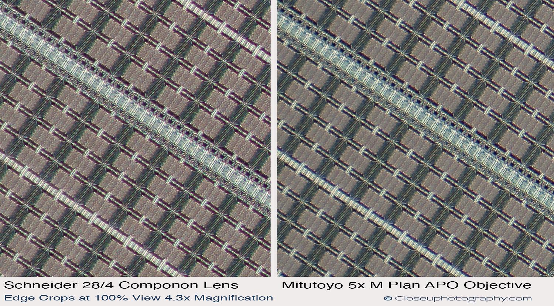 Edge-crops-Schneider-Makro-symmar-120-and-SK-Componon-28-4-at-4.3x-vs-Mitutoyo-5x-Plan-APO-closeuphotography.com.jpg
