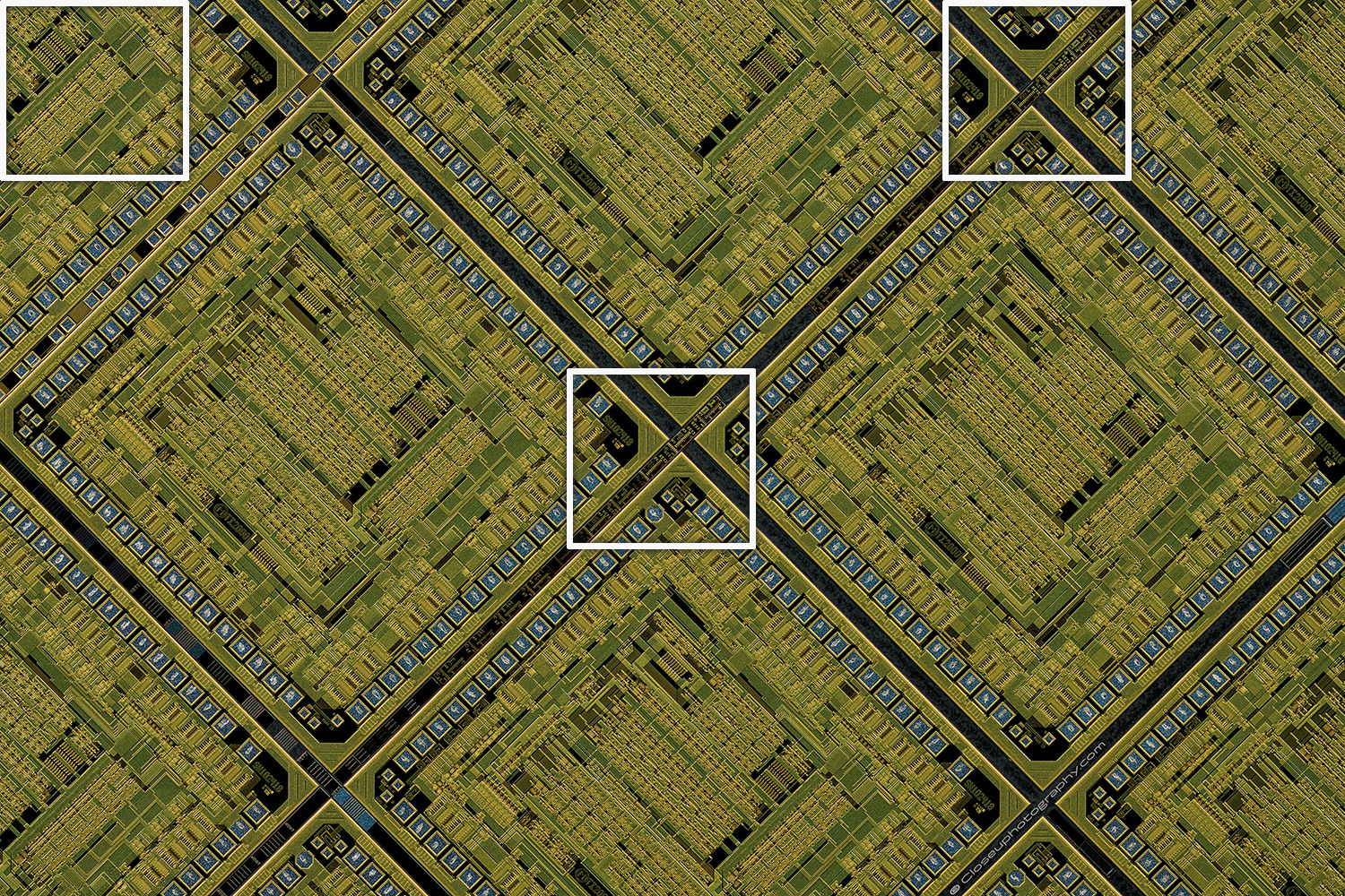 Crop-areas-outlined-Componon-35mm-f2.8-Line-Scan-Lens-two-views-at-3.2x-www-Closeuphotography-com.jpg