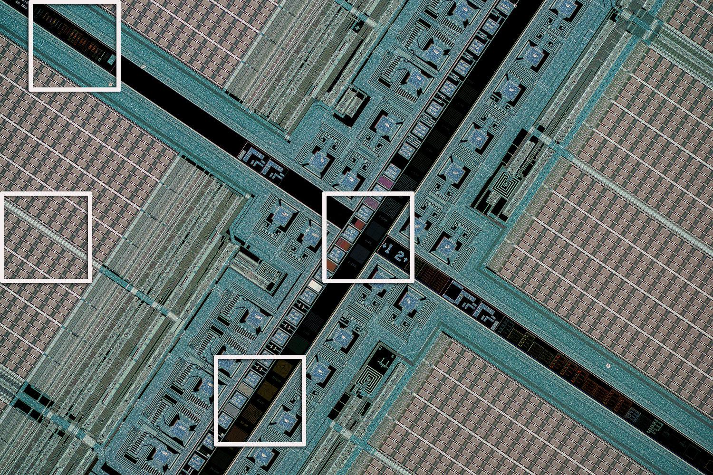 Crop-areas-highlighted-Schneider-Makro-symmar-120-and-SK-Componon-28-2.8-at-4.3x-closeuphotography.com.JPG