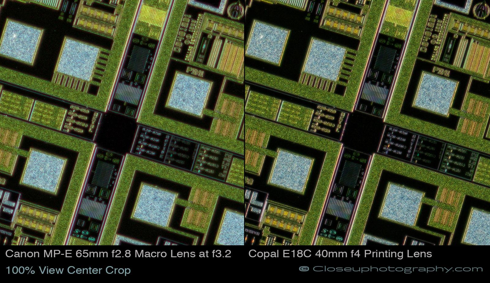 100-percent-view-center-crop-Canon-MPE-65-vs-Copal-E18C-40mm-at-3.4x-www-Closeuphotography-com.jpg