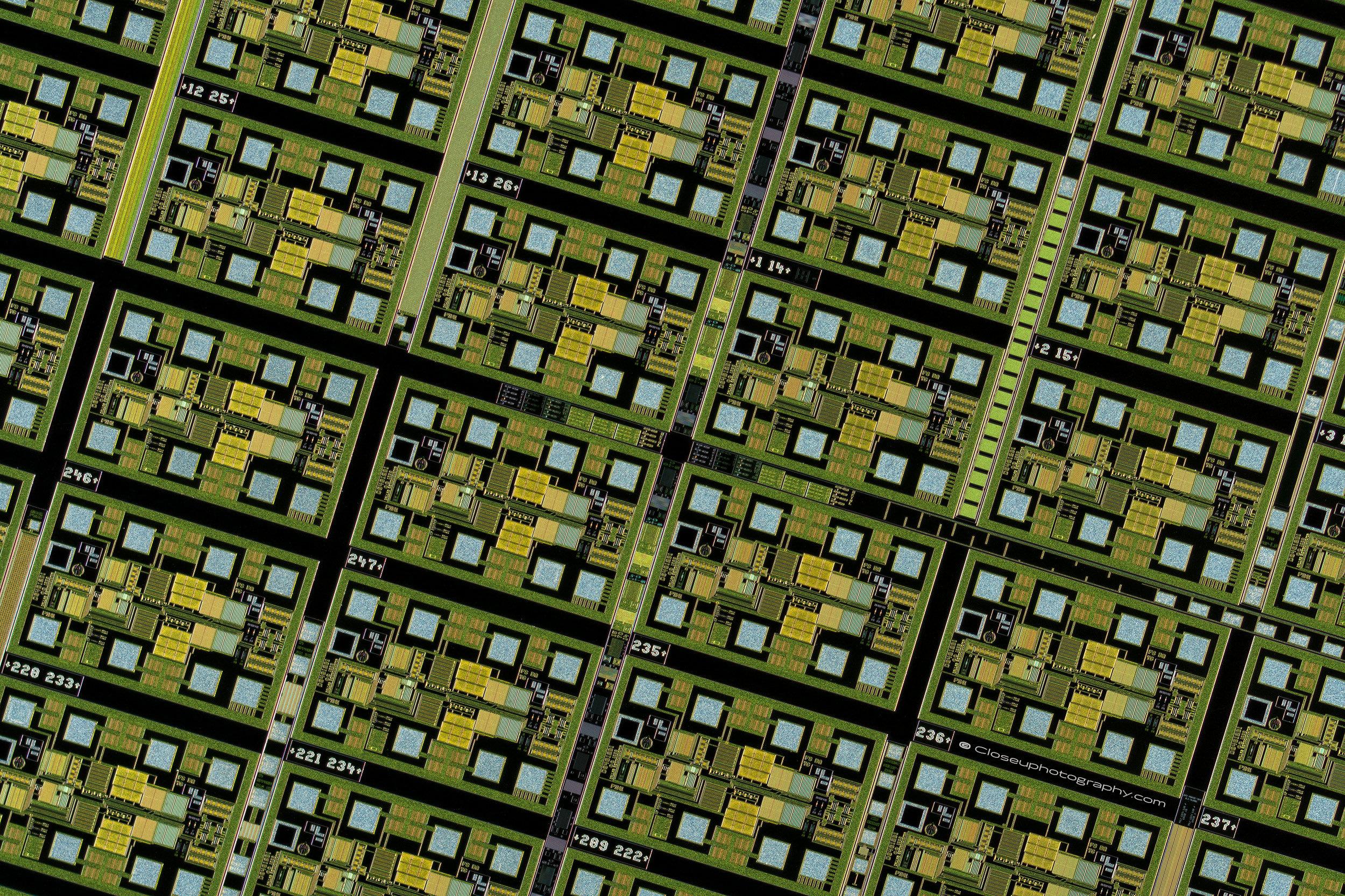 2500-pixels-Copal-E18C-lens-at-3.4x-www-Closeuphotography-com.jpg