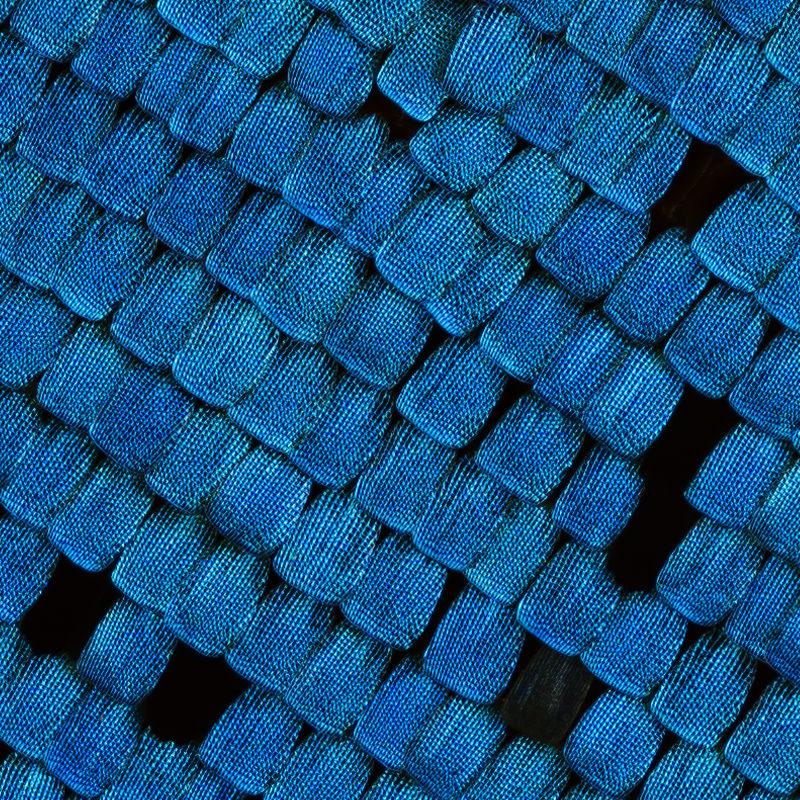Center-100-percent-crop-Blue-Arrow-Schneider-Componon-28-f2.8-Line-Scan-Lens-with-Mejiro-90mm-f5.6-Line-Scan-Lens-3.2x-www.closeuphotography.jpg