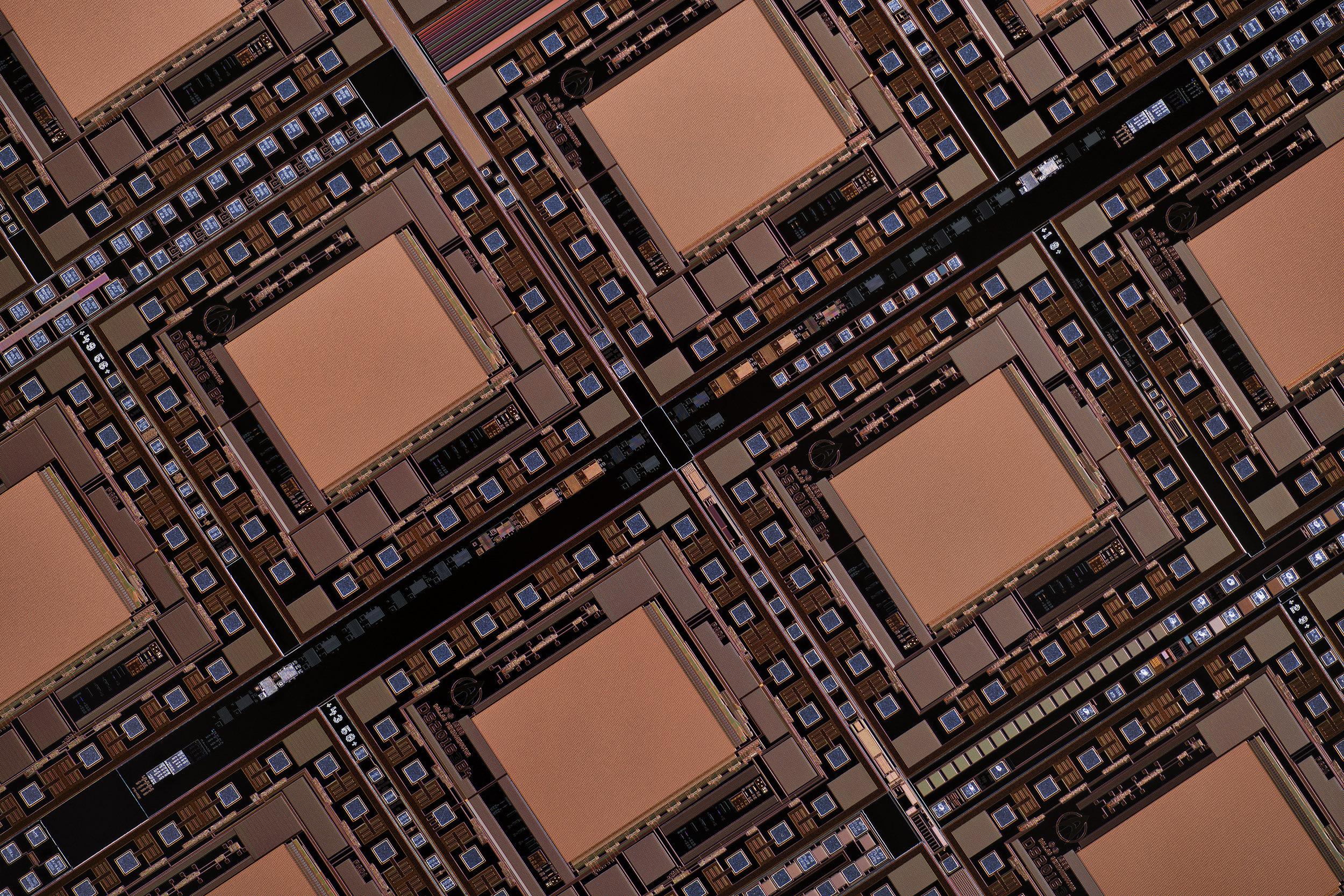 Schneider Kreuznach 2.8/28 Componon lens and Mejiro 5.6/90 scan lens at 3.2x with the Nikon D850 full frame sensor body