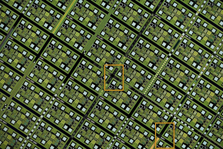2.5x-test-crop-outlines-www-Closeuphotography-com.jpg
