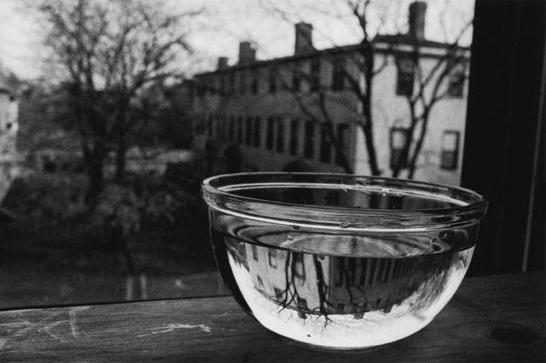 bowl-of-water.jpg