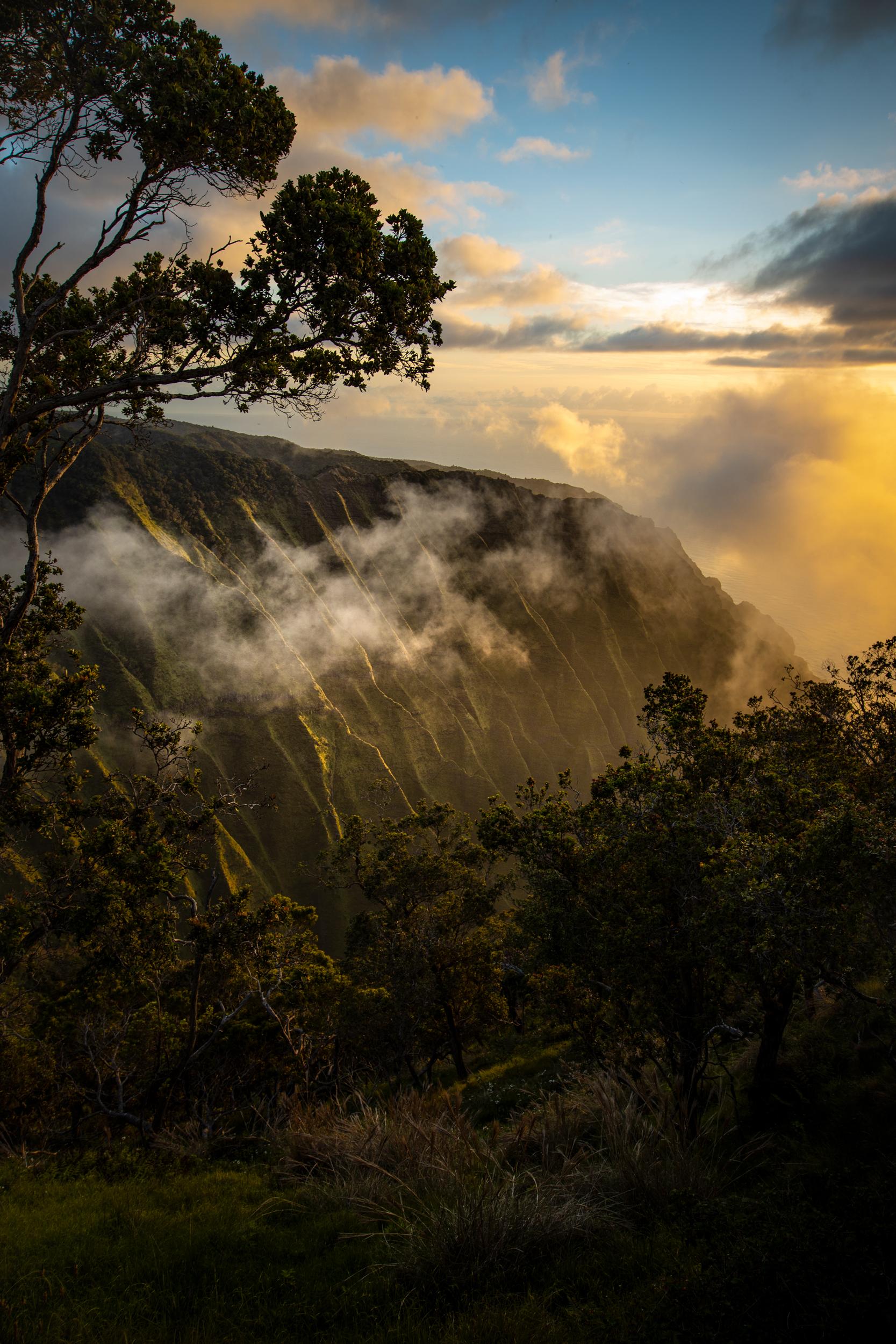 Honopu Valley