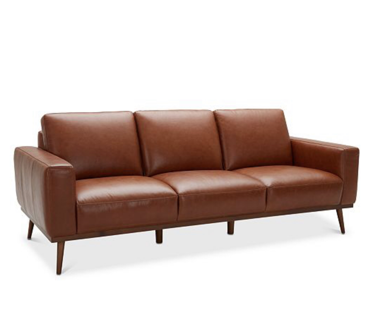 Living room: Cognac Leather Sofa