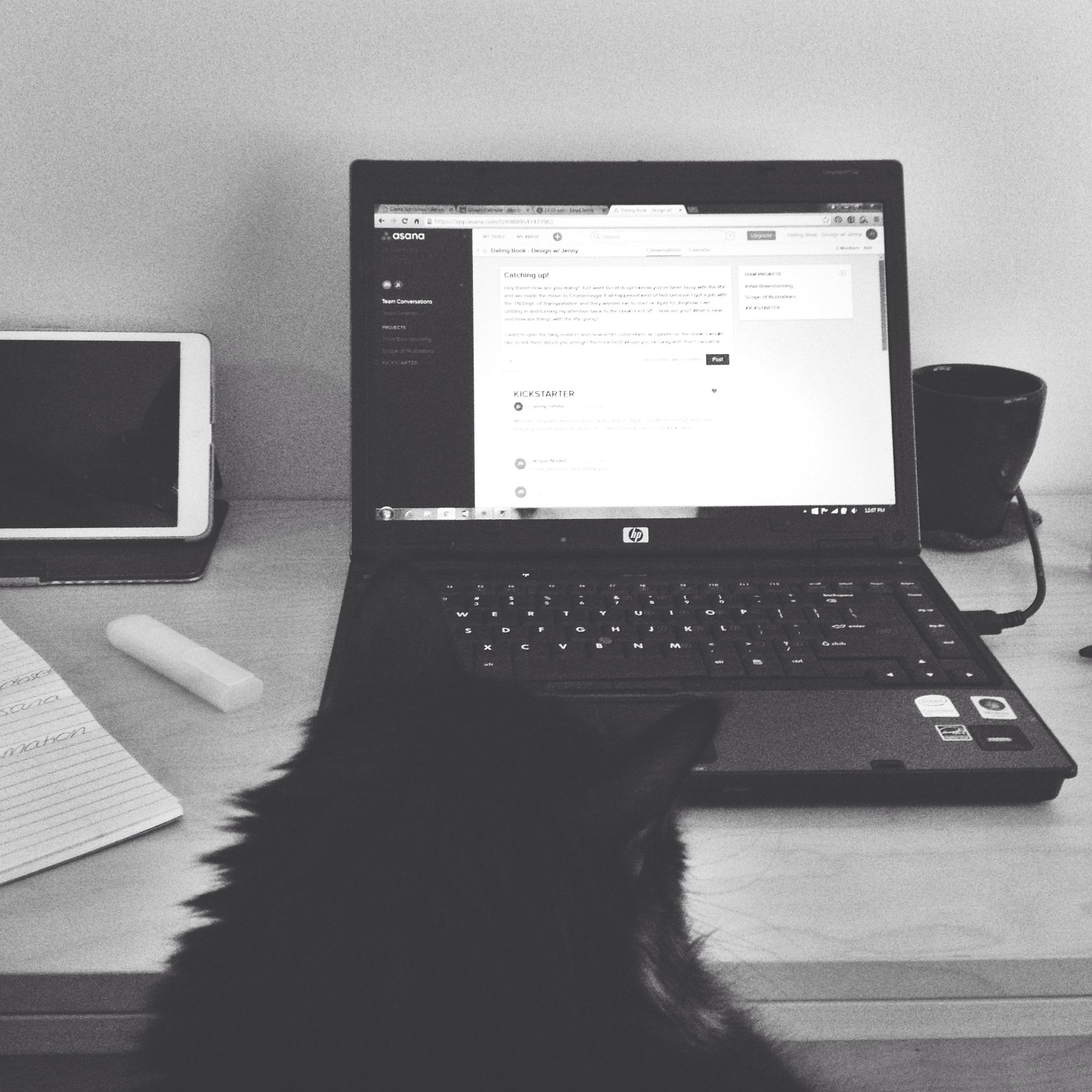 Poe, my supervisor, looking on as I prep the Kickstarter.