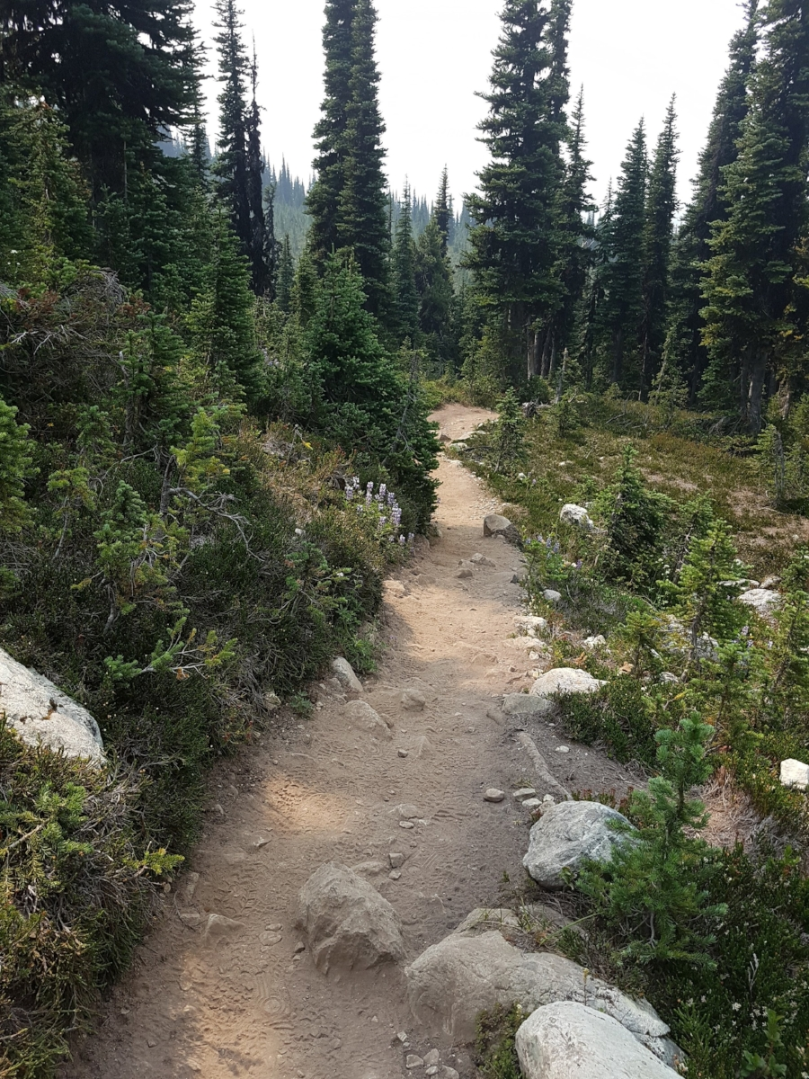 Trail to Black Tusk - Photo by Kandice Leaf