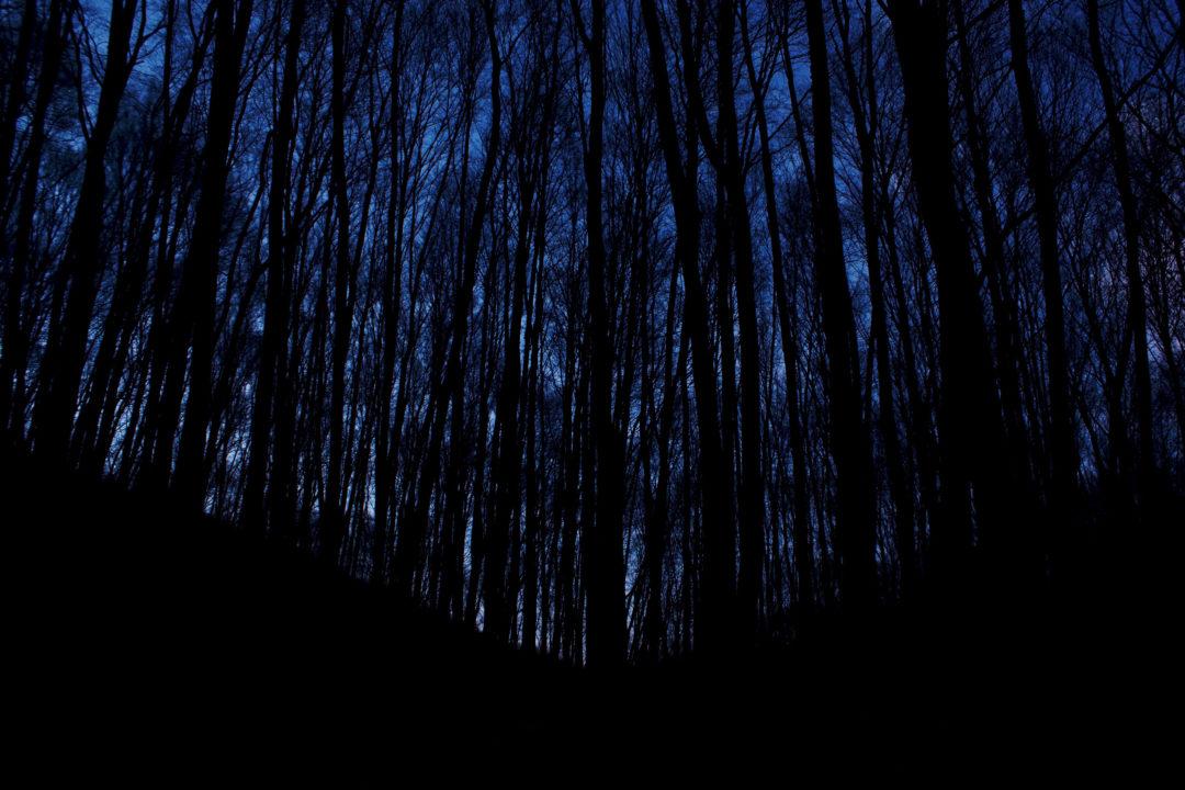 dark-night-header.jpg